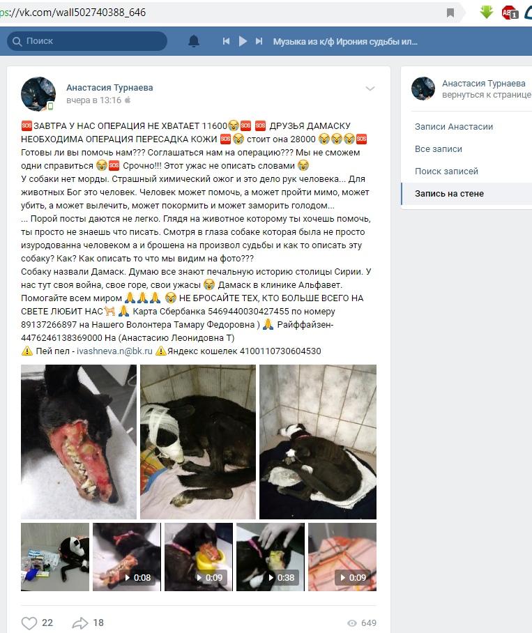 Страница и посты о фин помощи мошенницы из Омска